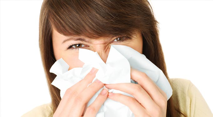 Remedies for hayfever allergies