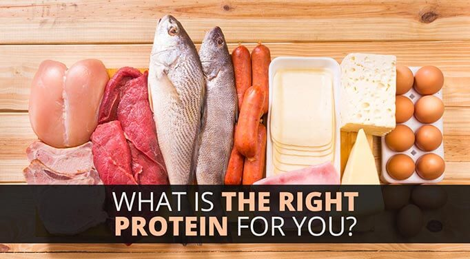 unhealthy sources of protein