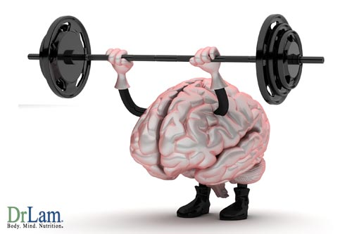 Memory Improvement Exercises Pump Your Brain Up