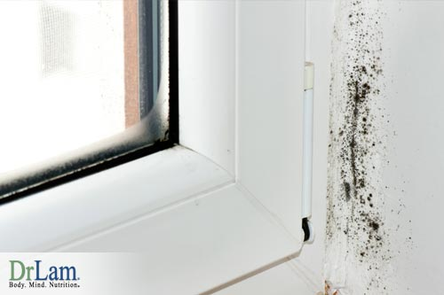 Mold and  polluted environment
