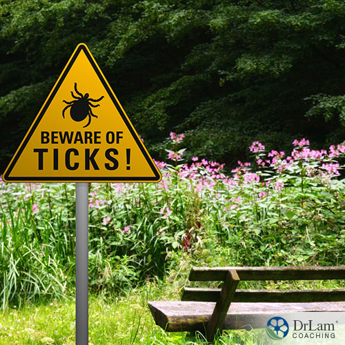 a sign for warning that there is ticks on the bench with nature