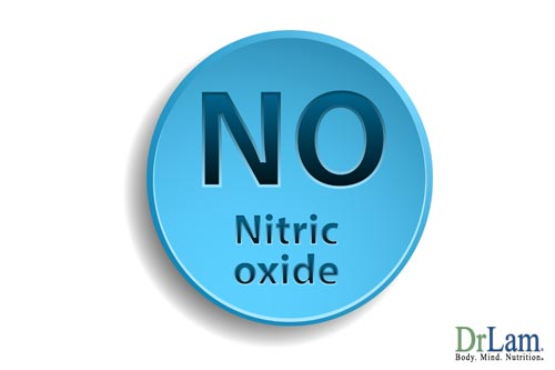 Nitric oxide can answer the question: Can heart disease be reversed?