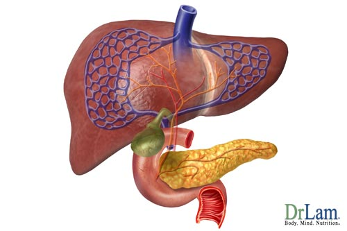 The thyroid, pancreas and liver are components of the metabolic stress response, but medical cannabis may help