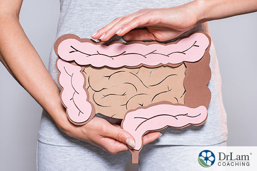 woman holding an image of digestive system