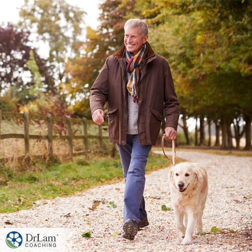 An image of an older man walking with a dog enjoying some pet therapy
