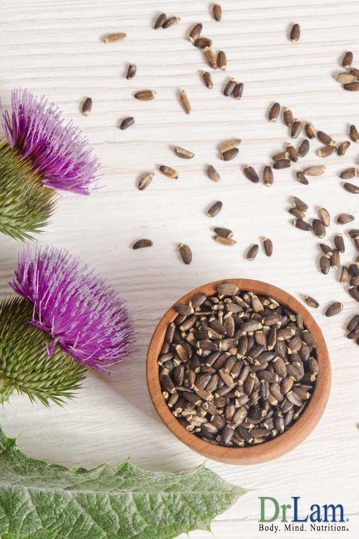 Liver Cleansing Herbs: Milk Thistle Benefits Aid Detoxification