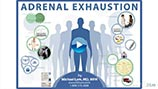 Adrenal Fatigue and Adrenal Exhaustion