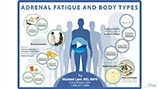 Adrenal Fatigue and Body Types