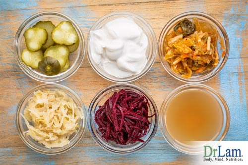 Healthy Digestive System and probiotics