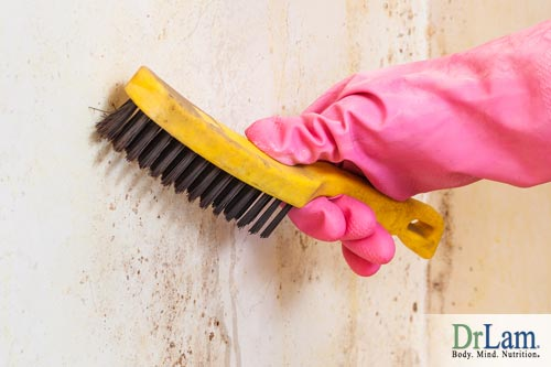 Mold toxicity symptoms can be reduced by keeping up with dust and dirt