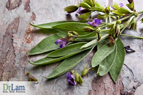 Estrogen imbalance can be improved by using sage.