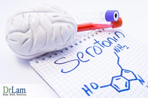 How serotonin plays a role in excitatory and Inhibitory Neurotransmitters