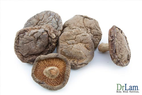 The shitake mushroom and olive leaf and cancer fighting foods