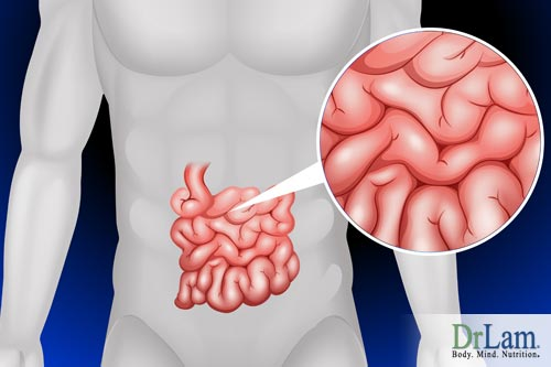 Having healthy gut bacteria can reduce the risk of gastrointestinal disorders