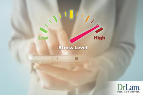 Natural bioidentical hormones and your stress levels