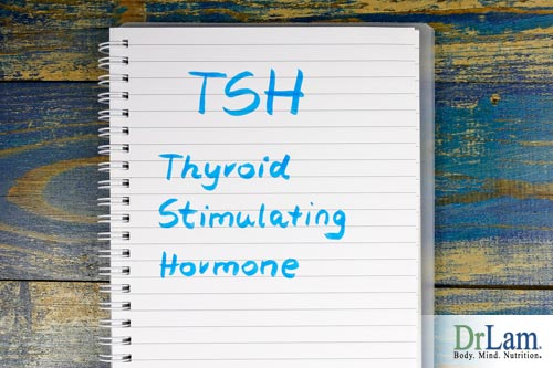 TSH test results and Adrenal Fatigue treatment