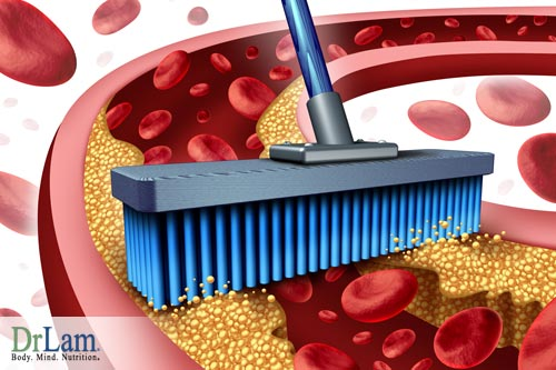 Preventing Cardiovascular Disease can be helped by maintaining the vascular wall