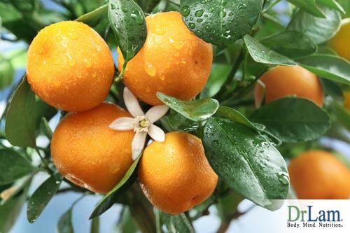 Vitamin C can be used to treat SARS