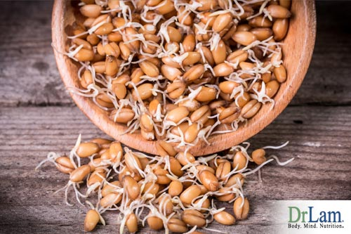 Sprouted wheat and wheat germs